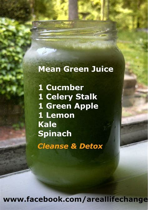 Green Juice Detox Results by 183 Best Juicing Recipes Fruit Concoctions Images On