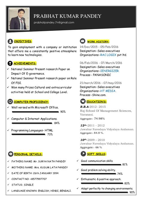 visual resume visual cv professional cv