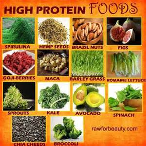 high protein foods health and therapies