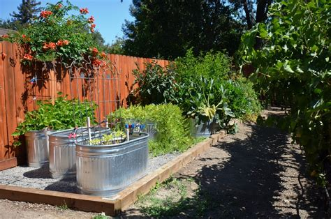 edible backyard surprising galvanized trough decorating ideas