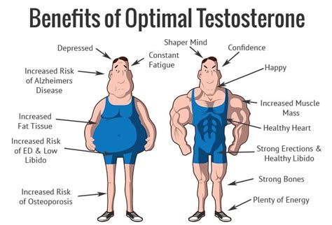 low t supplements benefits of testosterone in males