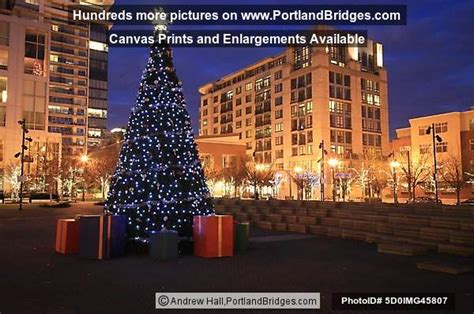 pearl district jamison square christmas tree 2008