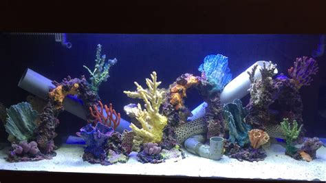 Tumbuhan Coral Artifisial Dekorasi Aquarium the most beautiful made artificial corals sgreefers for reefers by reefers