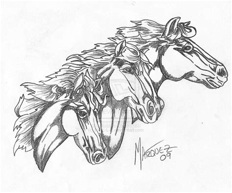 wild horse coloring pages www imgkid com the image kid