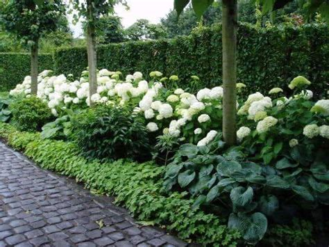 Pikmin 2 White Flower Garden 23 Gardening Ideas Designing A White Flower Garden Decoratop