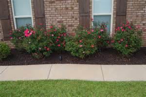 landscaping with flowers and shrubs garden design 41767 garden inspiration ideas