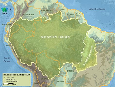 amazon map 100 map of the amazon river deforestation allen
