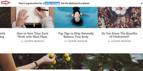 Studiopress Wellness Pro Theme genesis wellness pro review studiopress worth