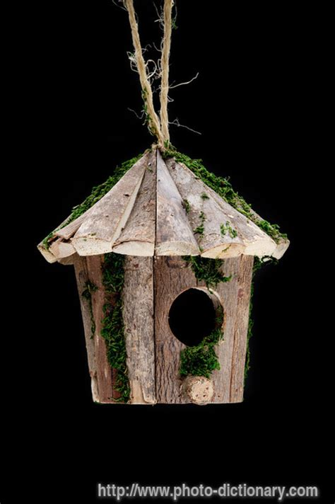 Feeder Meaning Bird Feeder Photo Picture Definition At Photo Dictionary
