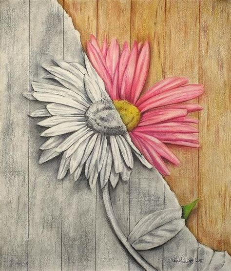 libro flowers in colored pencil prismacolor and graphite just a thought drawing shape flower and pencil