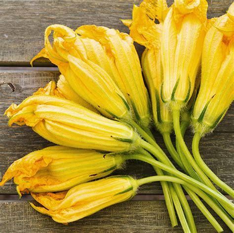 fiori di fiori di zucca orti a domicilio