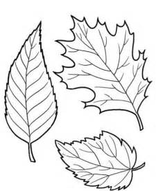 coloring fall leaf fall leaves coloring pages beautiful leaves educational
