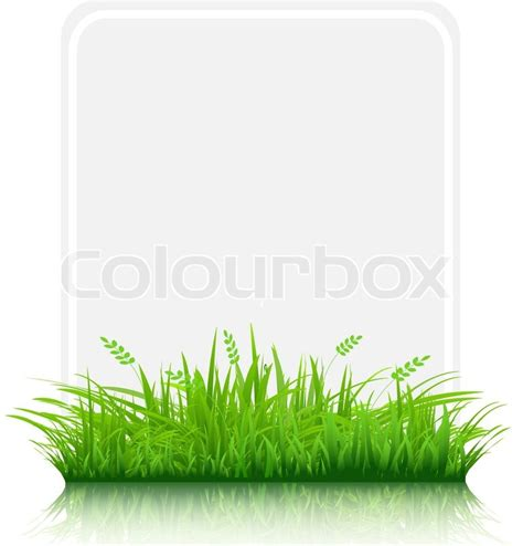 Paper From Grass - grass border with paper blank gift tag isolated on white
