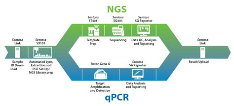 the templates for next generation sequencing are flash card solutions vela diagnostics ngs and pcr solutions