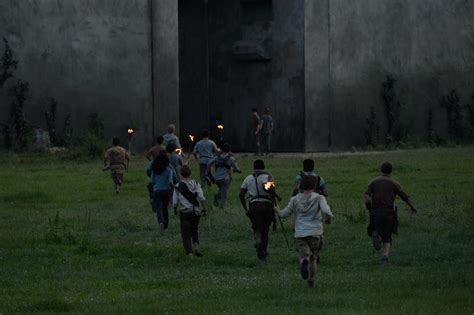 film maze runner gratis the maze runner running wallpapers and images wallpapers
