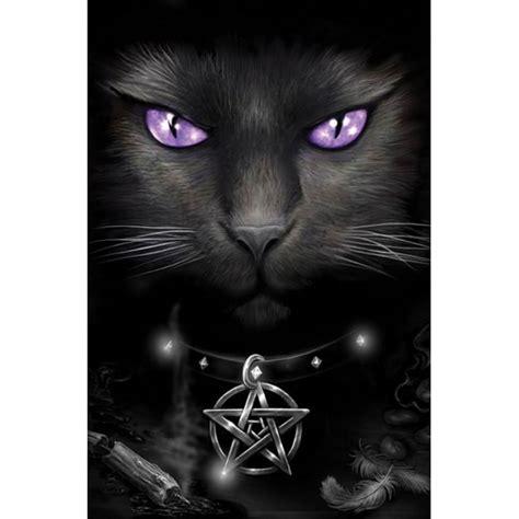 magic cat aʀċɦcʟaռ tɧҽ cɭaŋ օʄ tɦɛ cɛʟɛstɨaʟ uռɖɛʀաօʀʟɖ sɨɢռ ʊքs