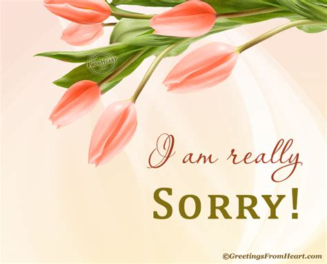 how to make a sorry card sorry images sorry scraps sorry cards