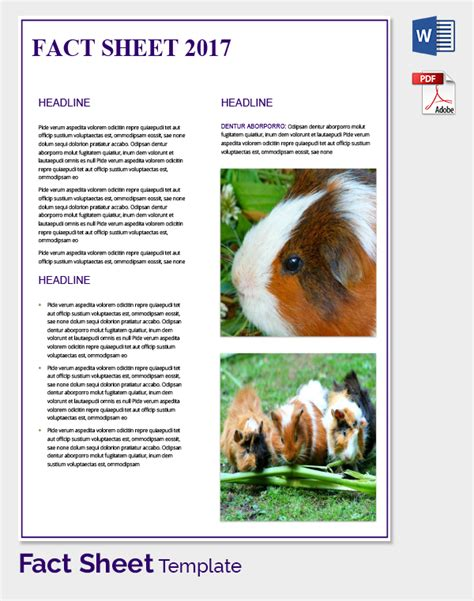 animal fact cards template fact sheet template 32 free word pdf documents