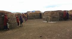 Image result for Serengeti