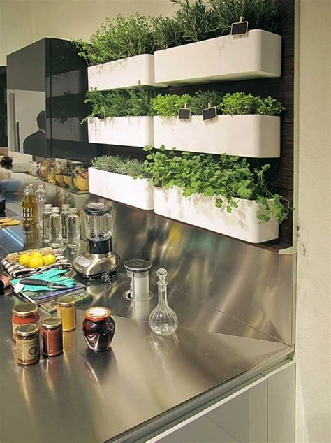 kitchen herbs herb garden in kitchen favething com