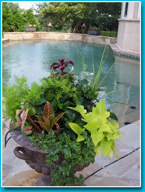 Green Thumb Landscape Your Total Landscape Care Company Green Thumb Landscape