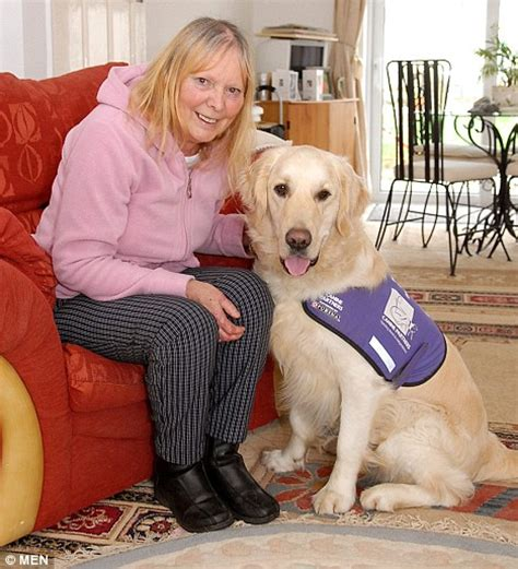 golden retriever breathing problems edward the wonderdog regularly saves owner s and lends a paw around the house