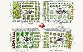 How To Plan A Flower Garden Layout Step 2 Plan Your Garden Layout