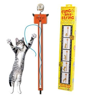 String Cat - fling ama string moody pet wag purr laugh