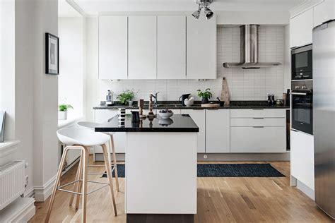 black  white themed scandinavian apartment  modern