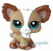 Littlest Pet Shop Chihuahua Long Hair Pink Purple Eyes 96 Puppy Dog