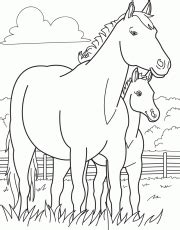 miniature horse coloring page miniature horse coloring pages