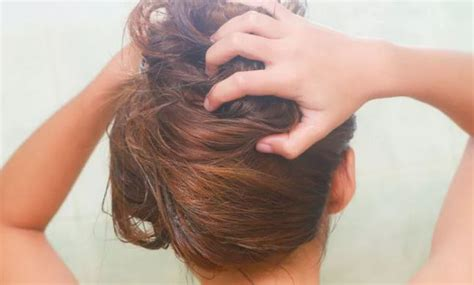 how to lighten dyed black hair to light brown best 25 lighten hair ideas on lighten