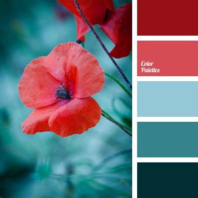 what compliments red cyan color palettes page 8 of 55 color palette ideas
