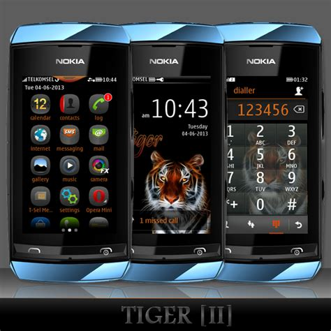 themes for nokia asha 501 dual sim download whatsapp for nokia asha 305 free revizioninnovation