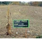 Corn Maze For 2nd Lieutenants