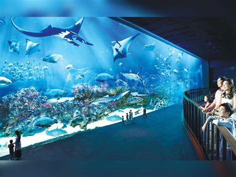 Voucher Tiket World Bali Anak tiket masuk seaworld ancol diskon 35
