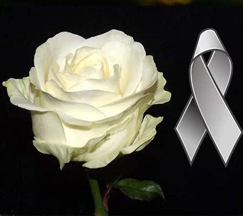 Imagenes Rosas Blancas De Luto | im 225 genes de luto con rosas blancas imagenes de luto