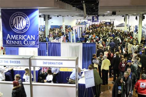 american kennel club breeds new york city goes to the dogs at akc meet the breeds american kennel club