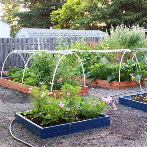 vegetable garden raised 20 raised bed garden designs and beautiful backyard