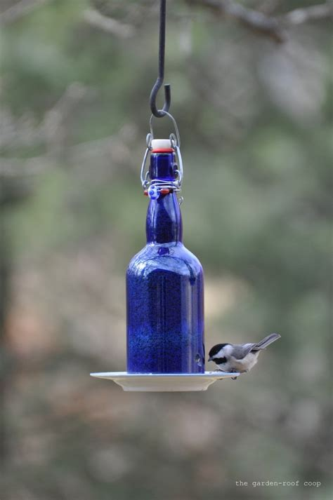 Bottle Feeder s bird gardens diy wine bottle bird feeders