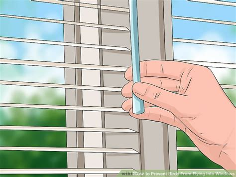 3 ways to prevent birds from flying into windows wikihow