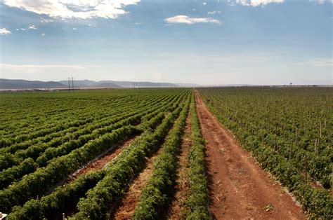 cadenas productivas relacionadas al turismo la argentina agr 237 cola por la no desaparici 243 n del sector