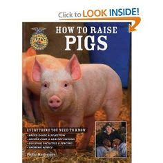 how to raise pigs in your backyard 1000 images about raising pigs to eat on pinterest pigs