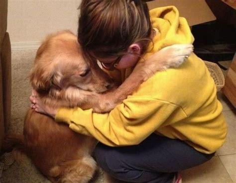 puppies hugging hug 1funny