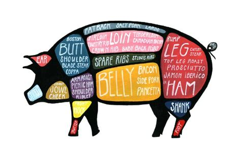 pig diagram aromatic shoulder of pork quot donnie brasco quot from the river