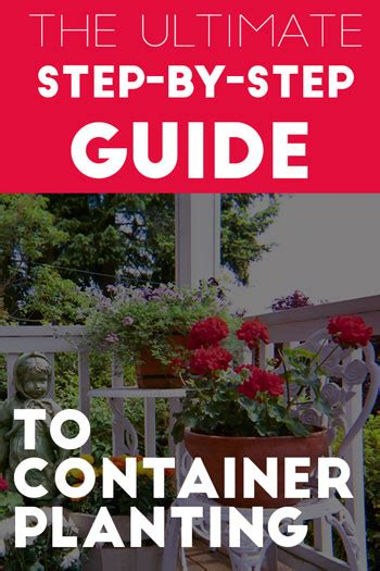 hydroponics the ultimate step by step guide to effective home gardening books homepage growyourmint