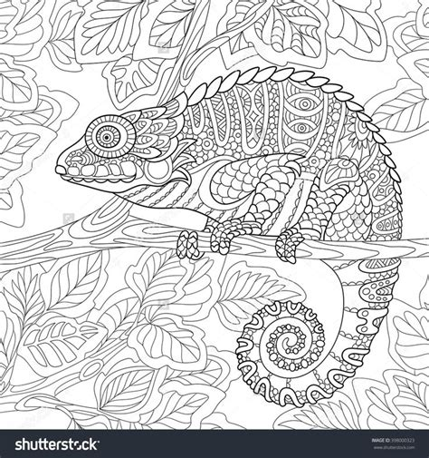 coloring pages for adults chameleon zentangle chameleon sitting on a tree branch coloring