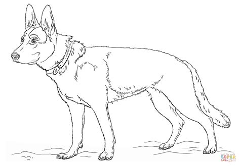 german shepherd dog coloring page free printable