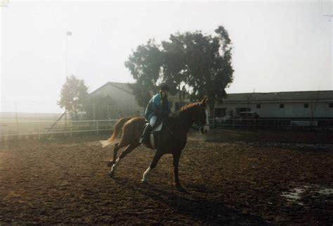 httpzoofilia mujer ensartada por caballo videos pornos de chicas cojiendo con animales perros y