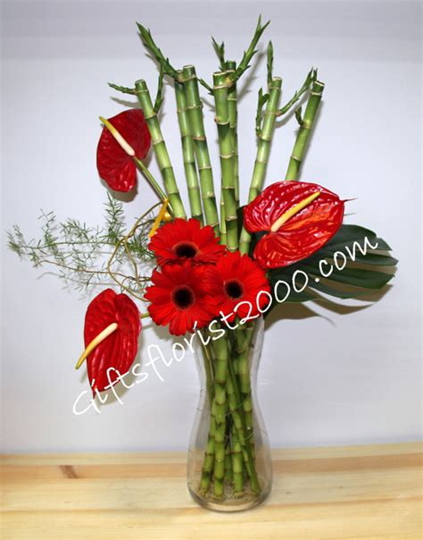 new year bamboo plant lucky bamboo new year gifts lunar new year plants